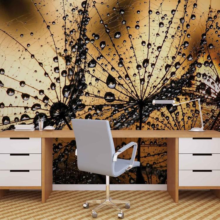 Dandelion Wallpaper Mural