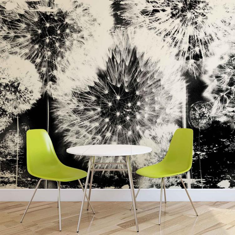 Dandelion Black White Wallpaper Mural