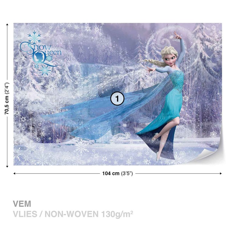 Disney Frozen Elsa Wallpaper Mural