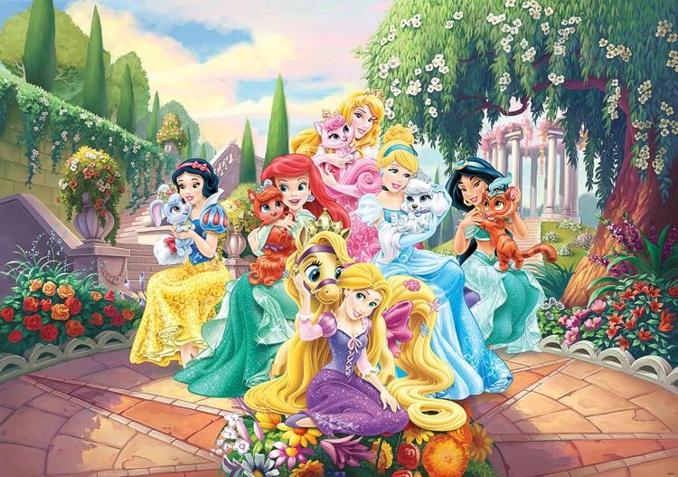 Disney Princesses Rapunzel Ariel Wallpaper Mural