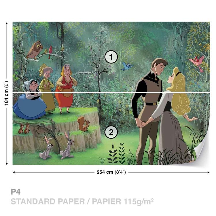 Disney Princesses Sleeping Beauty Wallpaper Mural