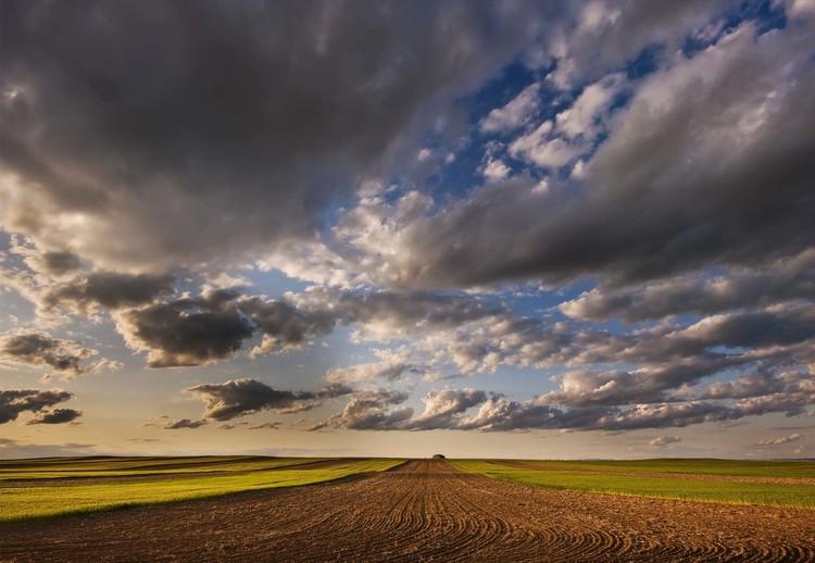 Farmland Under A Big Sky Wallpaper Mural