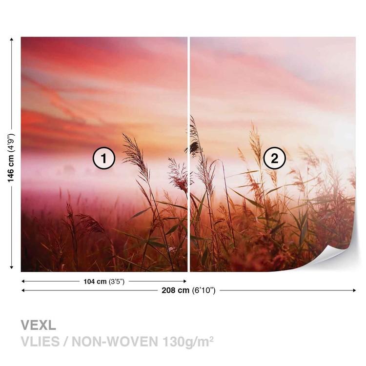 Field Sunset Sunrise Wallpaper Mural