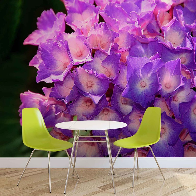 Flowers Hydrangea Purple Wallpaper Mural
