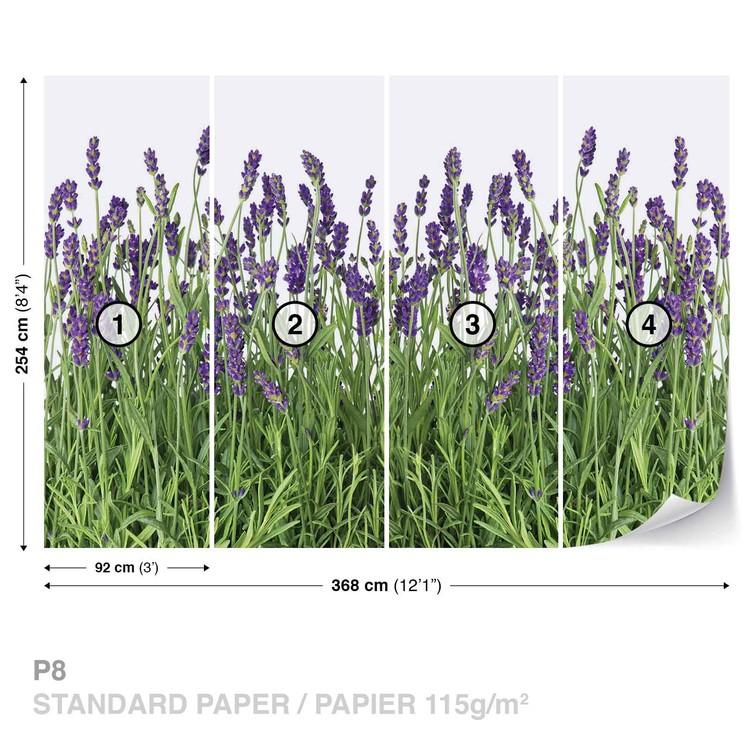 Flowers Lavender Wallpaper Mural