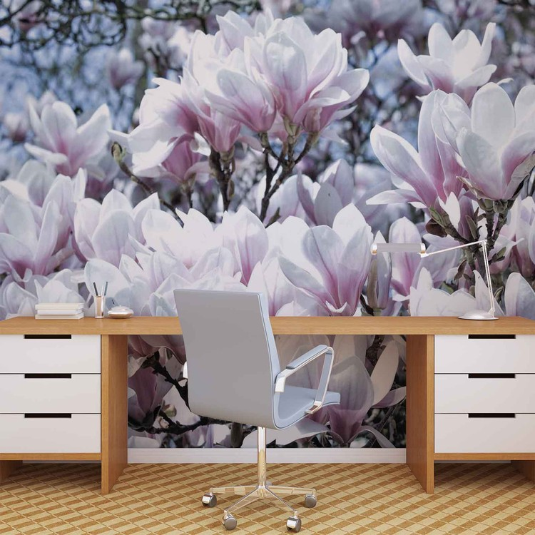 Flowers Magnolia Wallpaper Mural