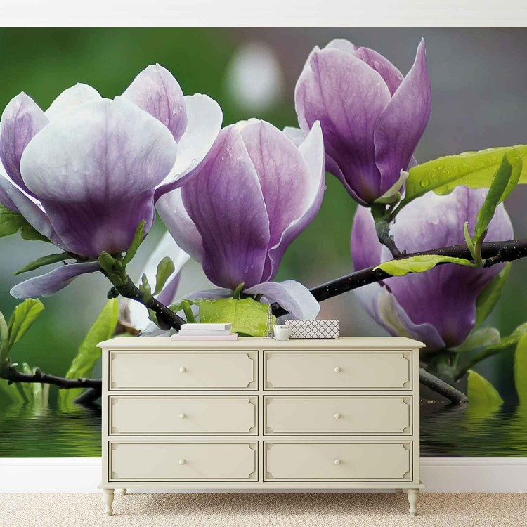Flowers Magnolia Water Wallpaper Mural