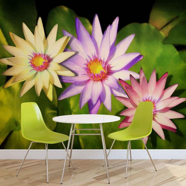Flowers Natur Wallpaper Mural