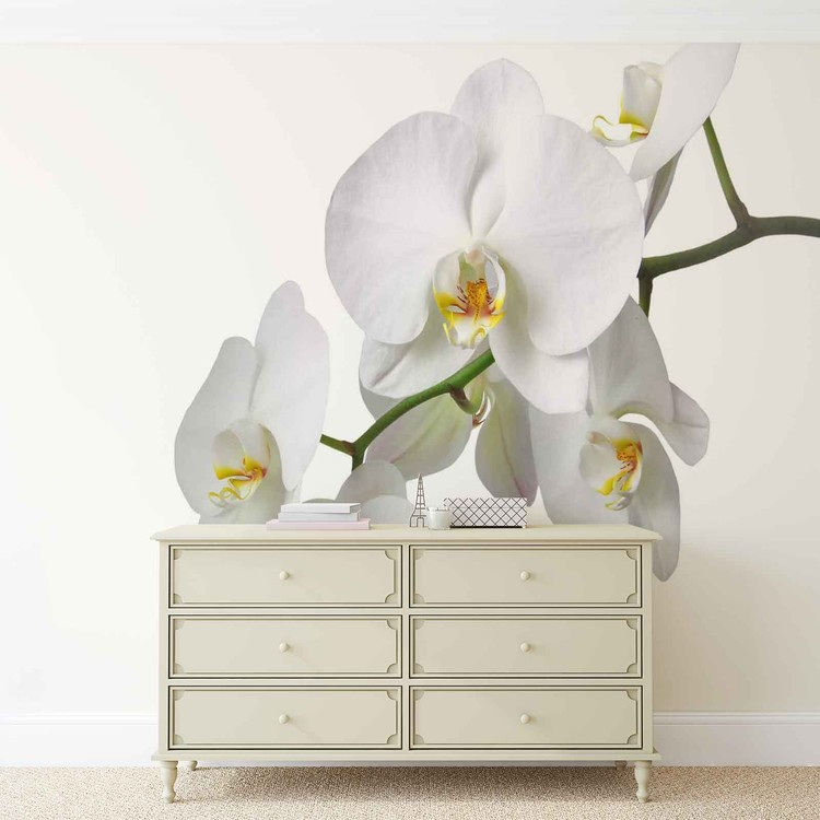 ... Flowers Orchids Nature White Wallpaper Mural ...