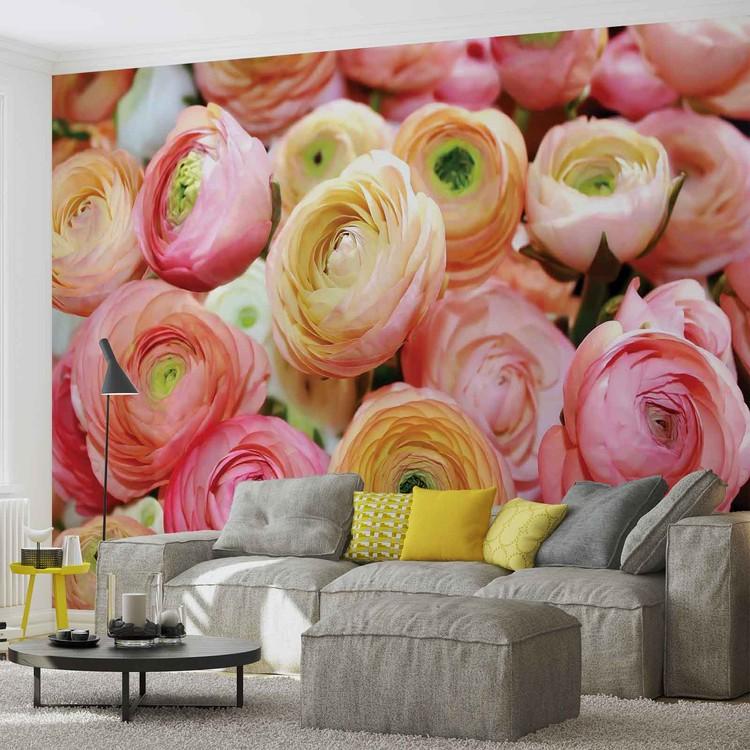 Flowers Peonies Colours Wallpaper Mural