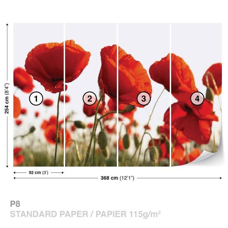 Flowers Poppies Field Nature Wallpaper Mural