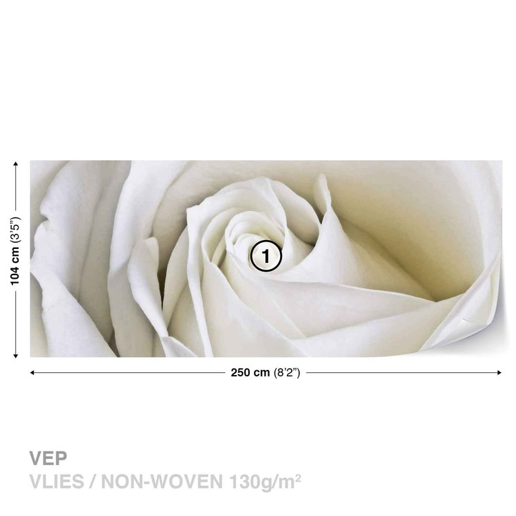 Flowers Rose White Nature Wallpaper Mural