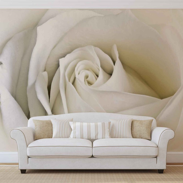 Flowers Rose White Nature Wallpaper Mural