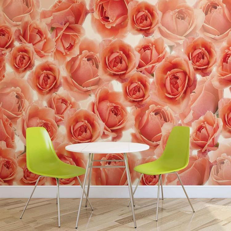 Flowers Roses Red Wallpaper Mural