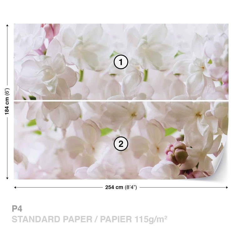 Flowers Spring Blossom Wallpaper Mural