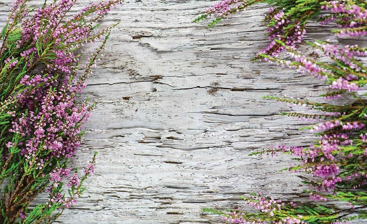 Flowers Wood Wallpaper Mural