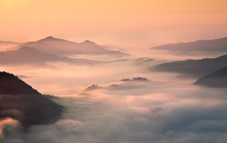foggy morning in the mountains Wallpaper Mural