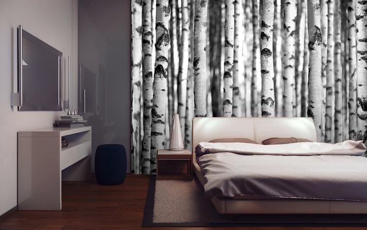 Forest - Birches Wallpaper Mural