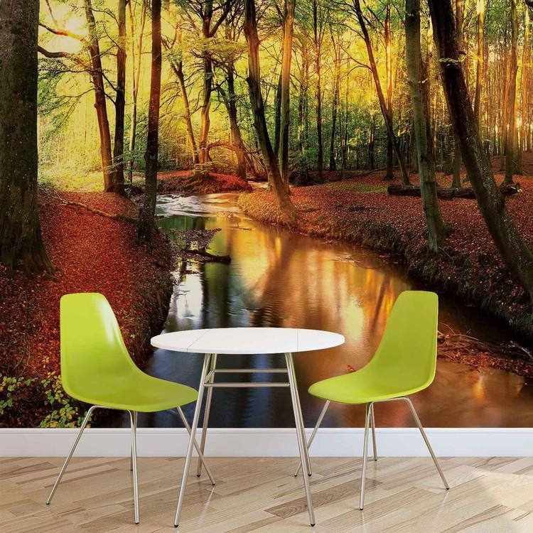 Forest River Beam Light Nature Wallpaper Mural
