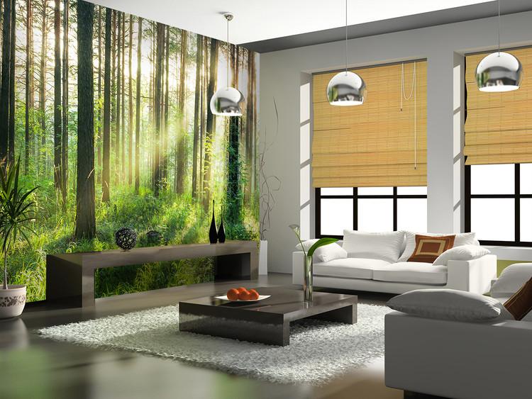 Forest – Sunbeams Wallpaper Mural