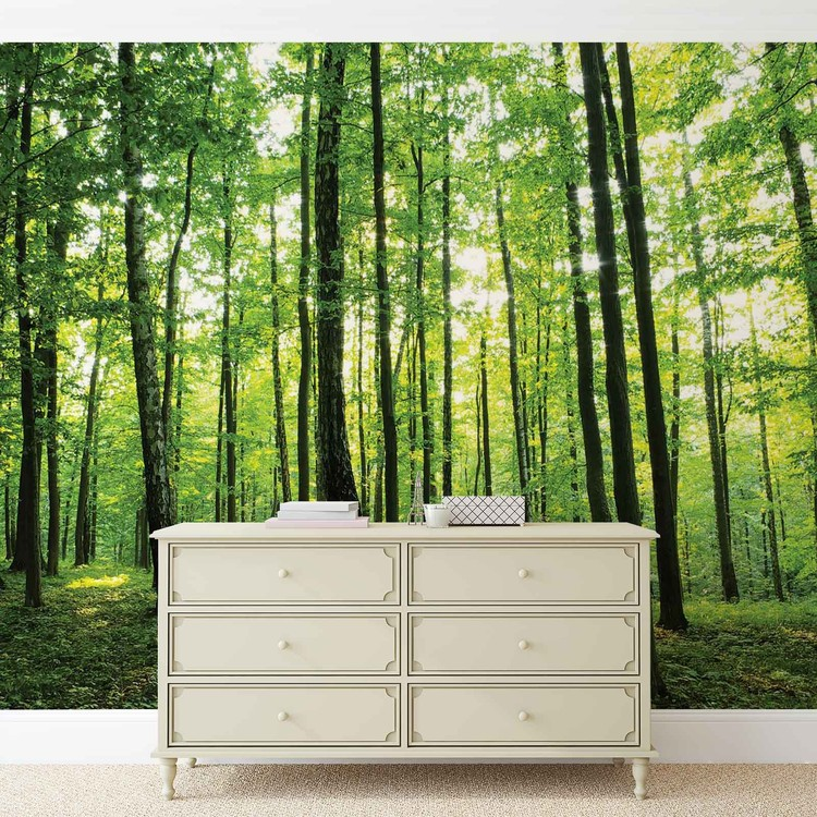 Forest Trees Green Nature Wall Paper Mural Buy at EuroPosters