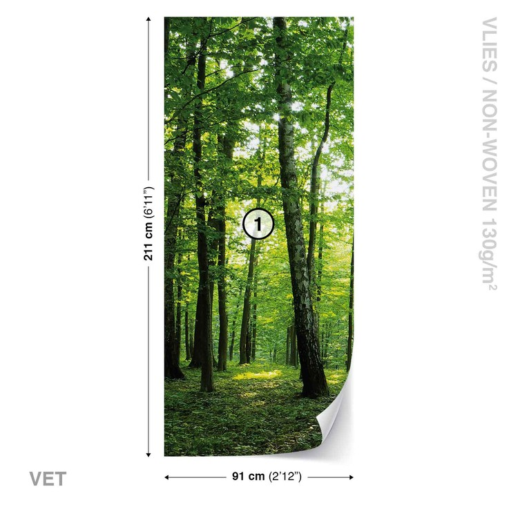 Forest Trees Green Nature Wallpaper Mural