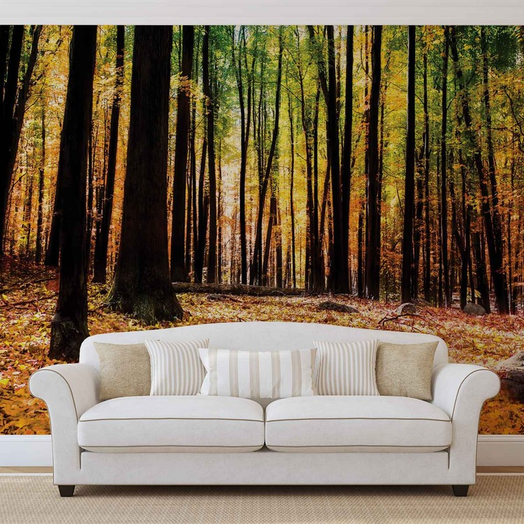Forest Woods Wallpaper Mural