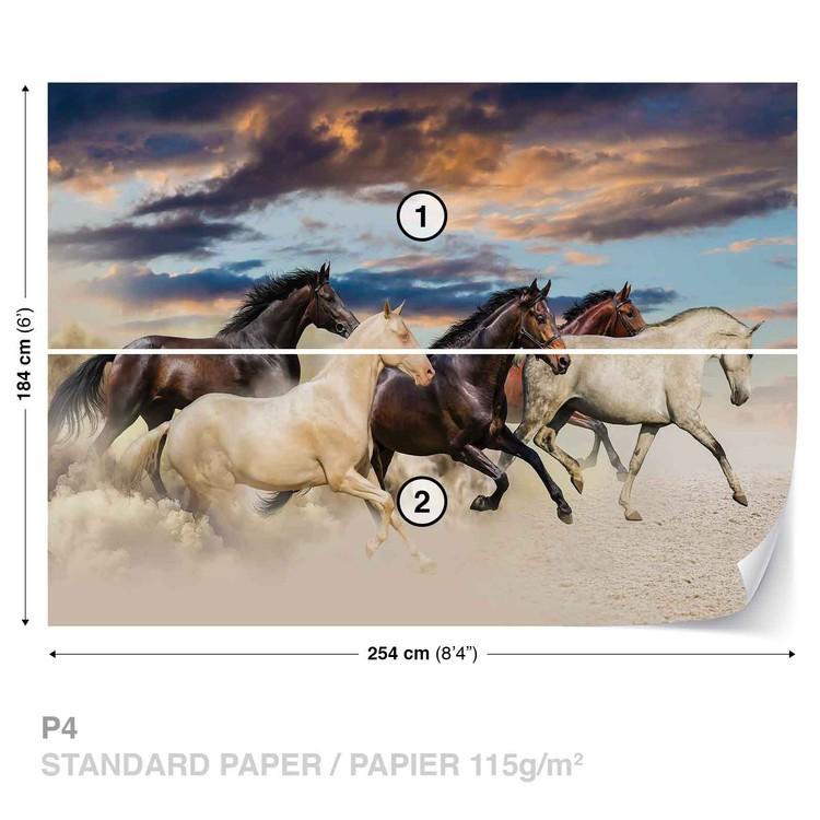 Horses Wallpaper Mural