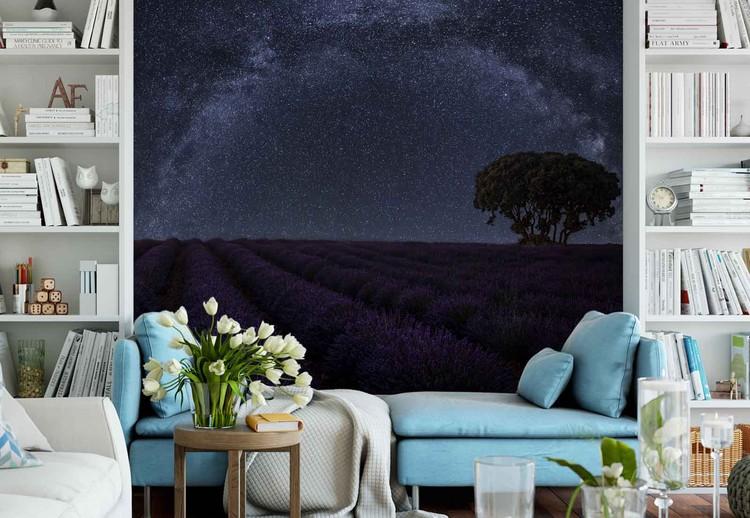 Lavender In Brihuega Wallpaper Mural