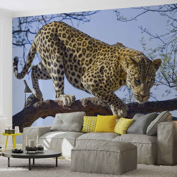 Leopard Tree Wallpaper Mural