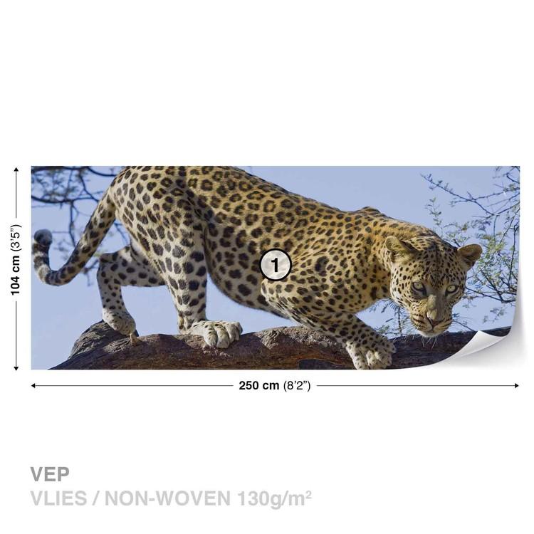 Leopard Tree Wallpaper Mural