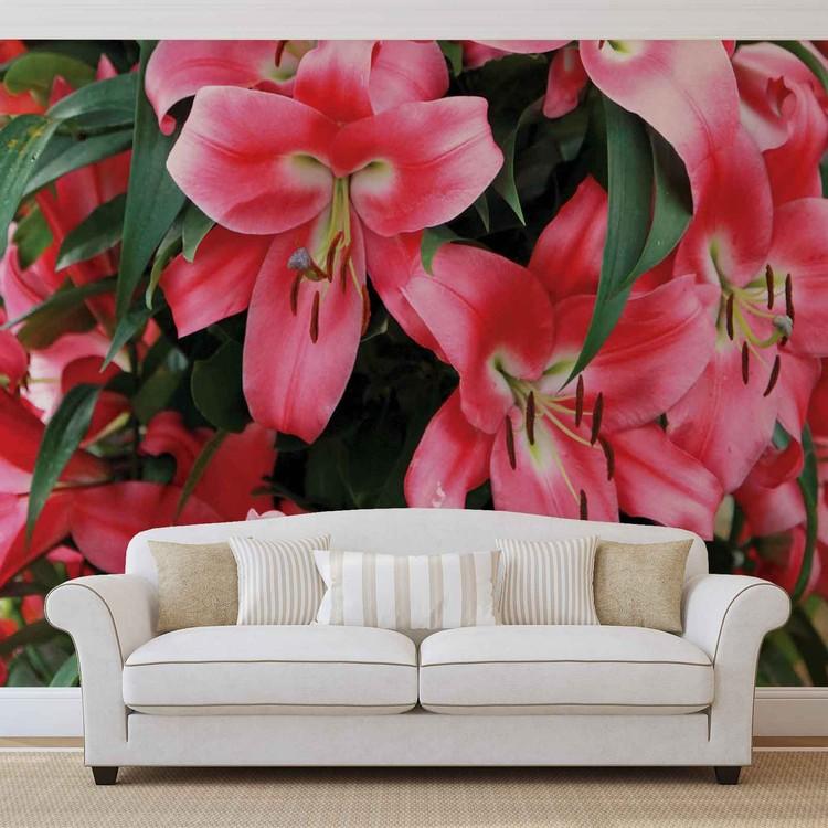 Lilys Wallpaper Mural