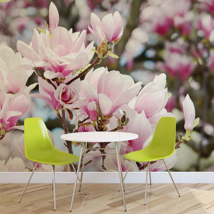 Magnolia Flowers Wallpaper Mural