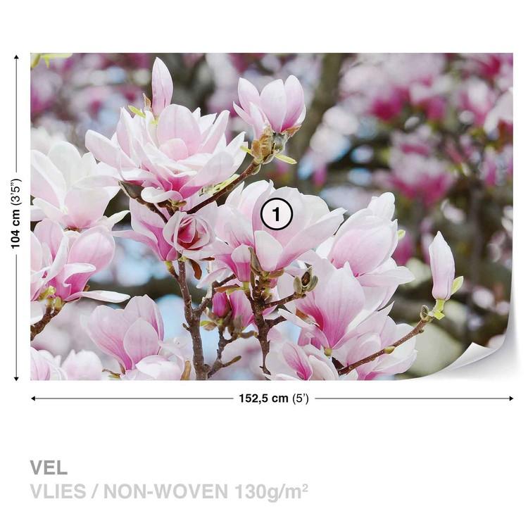 Magnolia Flowers Wallpaper Mural