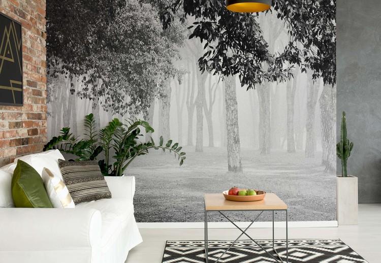 Morning Fog Wallpaper Mural