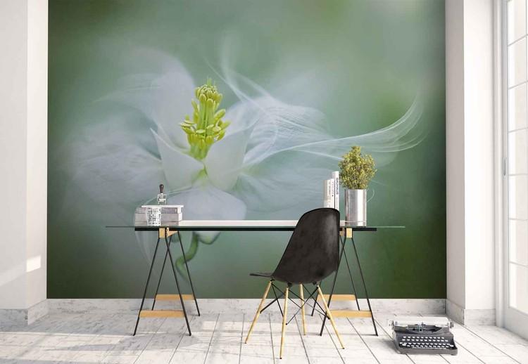 Mystical Wallpaper Mural