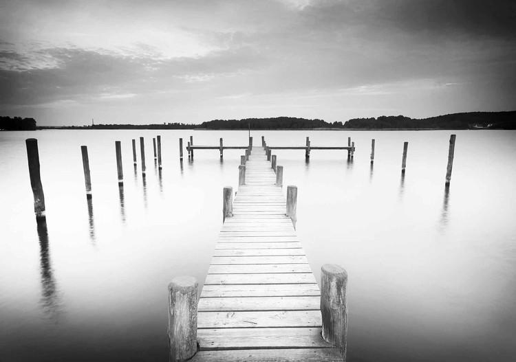 Nature Water Lake Jetty Black White Wallpaper Mural