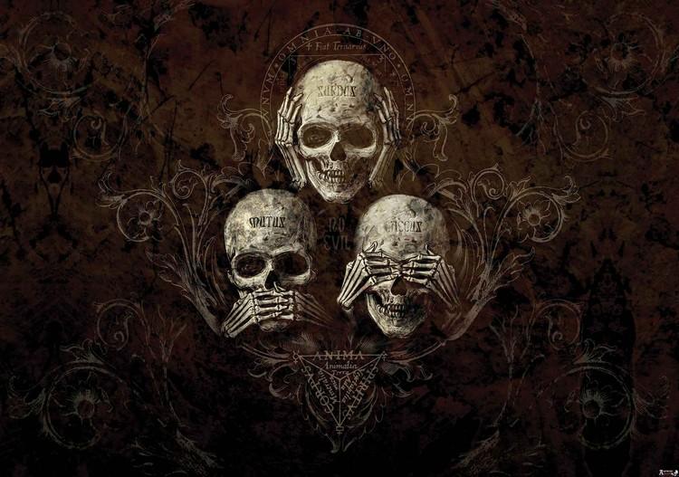 No Listen See Speak Skull Alchemy Wallpaper Mural