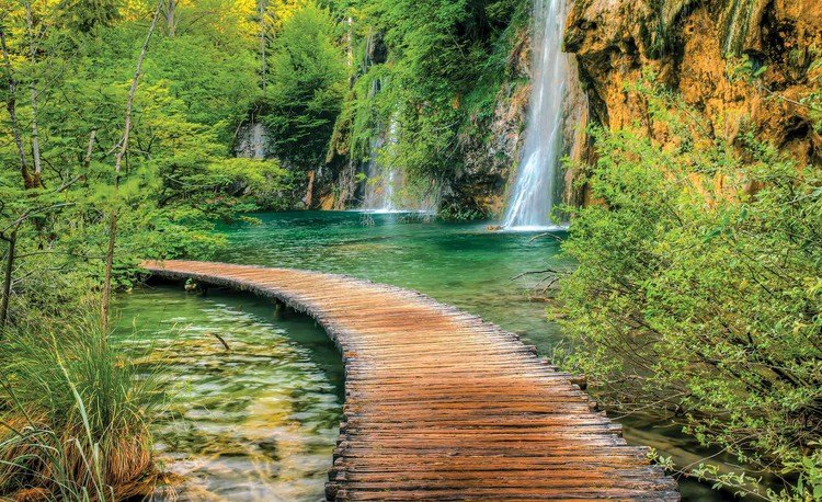 Path Sea Mountains Waterfall Forest Wallpaper Mural