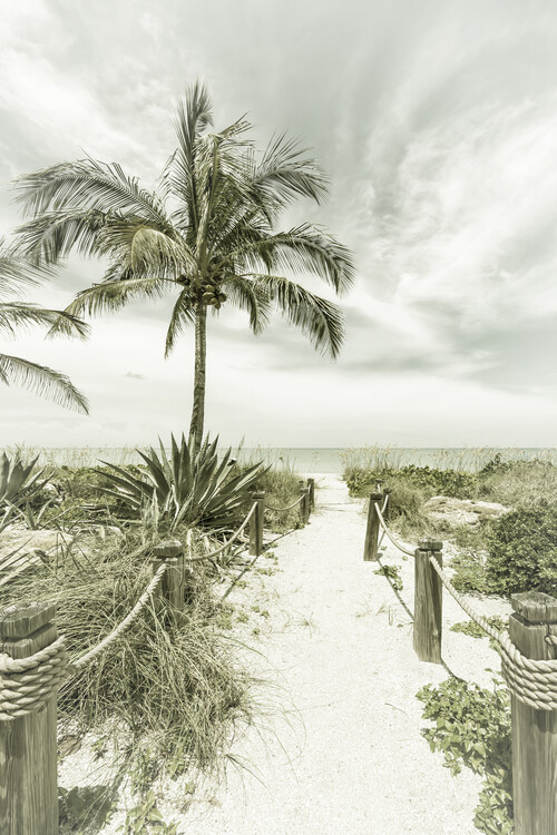 Path to the beach | Vintage Wallpaper Mural
