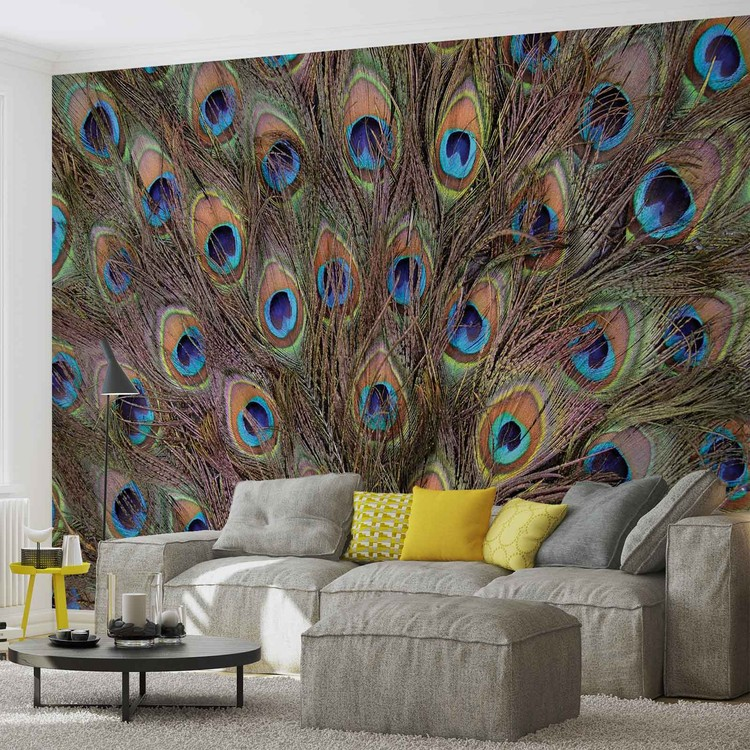 Peacock Feathers Wall Paper Mural