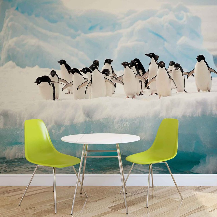 Penguins Wallpaper Mural
