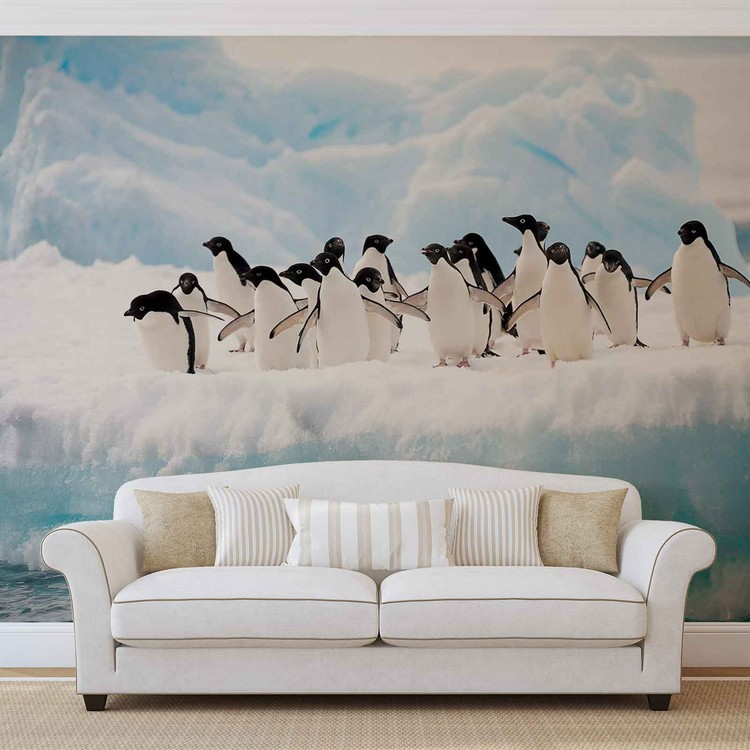 Penguins Wall Paper Mural | Buy at EuroPosters