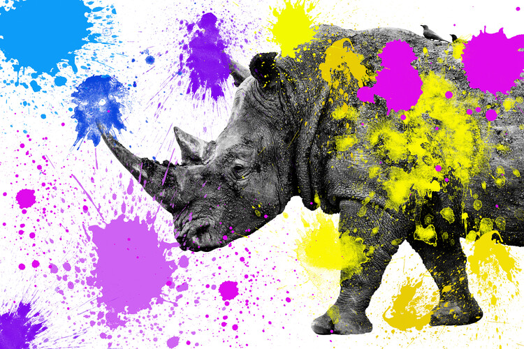 Rhino Wallpaper Mural