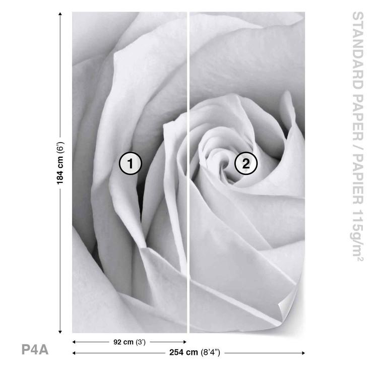 Rose Flower Wallpaper Mural