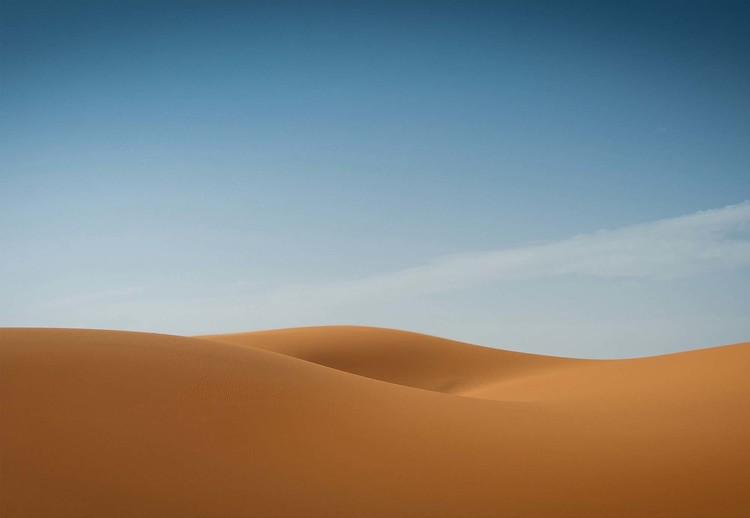 Sensual Desert Wallpaper Mural