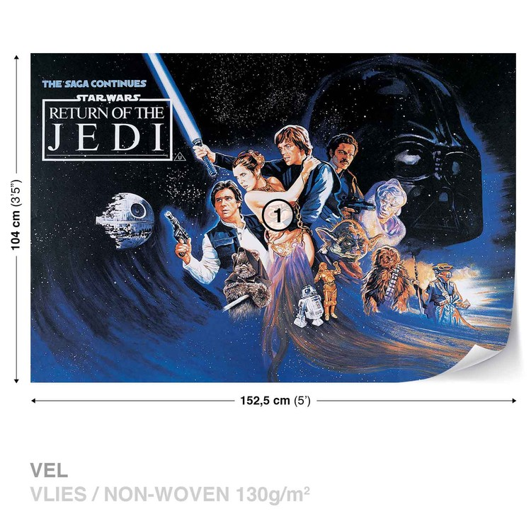 Star Wars Return Of The Jedi Wallpaper Mural