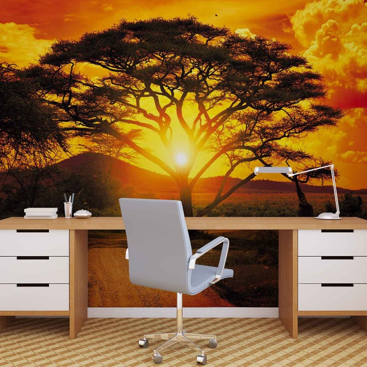 Sunset Africa Nature Tree Wallpaper Mural