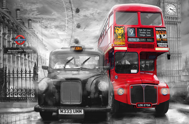 TAXI & BUS Wallpaper Mural