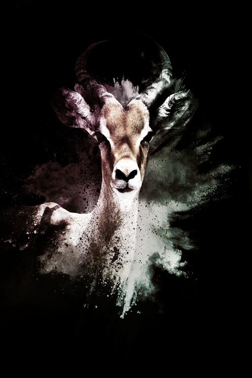 The Antelope Wallpaper Mural